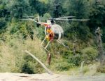 Say NO to Heli Hunting in New Zealand